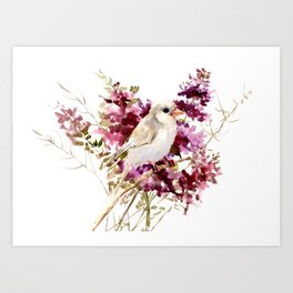 White Canary Bird and Purple Flowers Art Print
