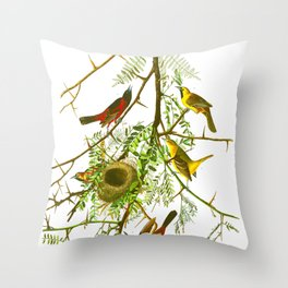 Orchard Oriole Bird Throw Pillow