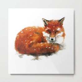 Sleeping Red Fox Metal Print