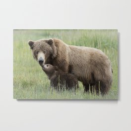 Baby Bear giving Mom a Snuggle Metal Print