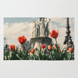 Tulips in front of a fountain. Rug