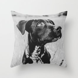 Wheatfield Dog Portrait // Sharing Memories with A Best Friend Such Amazing Eyes Throw Pillow