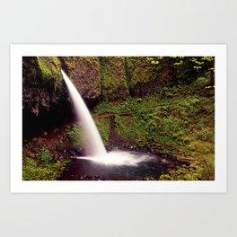Ponytail Falls H Art Print