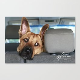 Tanner In the Backseat Canvas Print