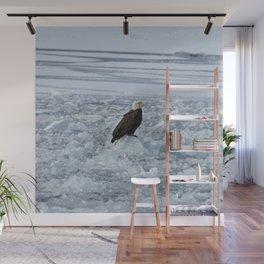 Bald eagle on ice Wall Mural