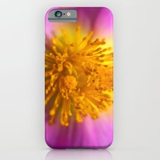Cistus Albidus 30-26 Slim Case iPhone 6s