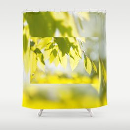 Young Elm leaves on blurred green Shower Curtain