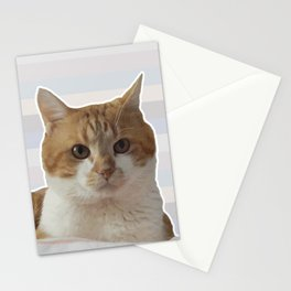 Red cat on a striped background. Stationery Cards