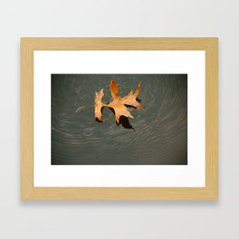 Oak on water Framed Art Print