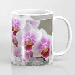 Phalaenopsis Orchid named Be Tris Coffee Mug