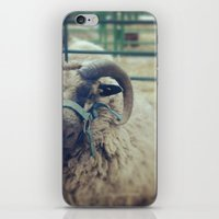 ram iPhone & iPod Skins featuring Ram by Girl with a Hook