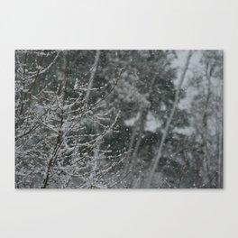 Snowy Day 1 Canvas Print