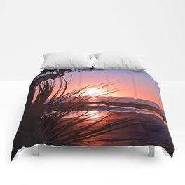 5am Comforters