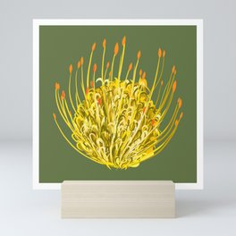 Pincushion Flower Yellow on Green Mini Art Print