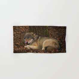 Sleepy Grey Wolf Hand & Bath Towel