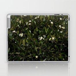 Bonitu i Flores Plumeria Laptop & iPad Skin