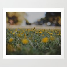 Yellow Summer Art Print