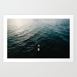 Sole Surfing Art Print
