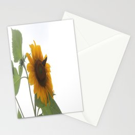 Butterflies on The Sun A Stationery Cards