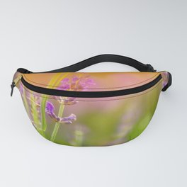 Towards the summer Fanny Pack
