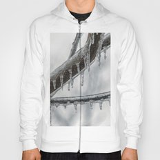 Icy Branch Hoody