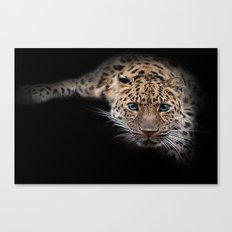 They call me puss Canvas Print