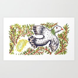 Lola the Pigeon Art Print