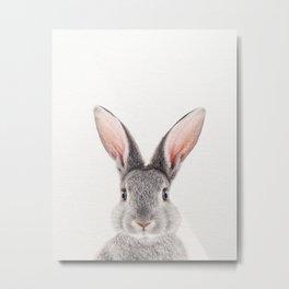 Baby Rabbit, Grey Bunny, Baby Animals Art Print By Synplus Metal Print