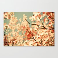 coral Canvas Prints featuring Pink by Olivia Joy StClaire