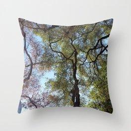 Dos Picos Ramona Oak Tree Throw Pillow
