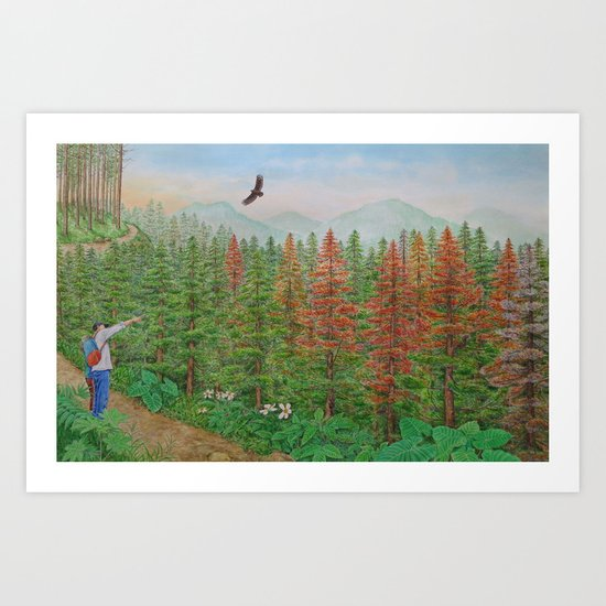 A Day of Forest(8). (coniferous forest) Art Print