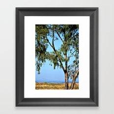 Eucalyptus Home Framed Art Print