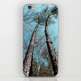 Twin Towers iPhone Skin