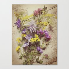 Flowers from the meadow Canvas Print