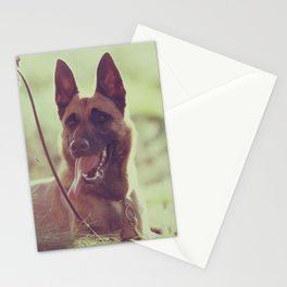 Malinios Beauty dog picture Stationery Cards