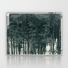 Tree Gazing Laptop & iPad Skin