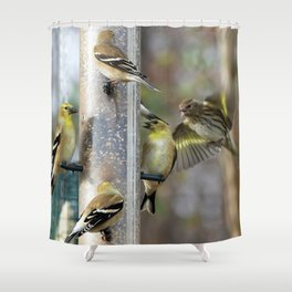 Goldfinches at the Feeder Shower Curtain