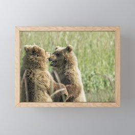 Brown Bear Cubs - Face Off Framed Mini Art Print