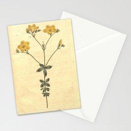 Flower 431 linum quadrifolium Four leaved Flax19 Stationery Cards