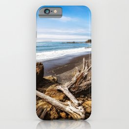 Remnants - Driftwood Logs Come to Rest on Shore of Washington Coast iPhone Case