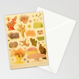 Antique Naturalist Coral Stationery Cards