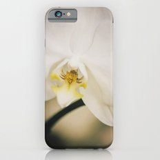 White Orchid iPhone 6s Slim Case