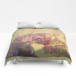 Wild Summer Flowers Comforters