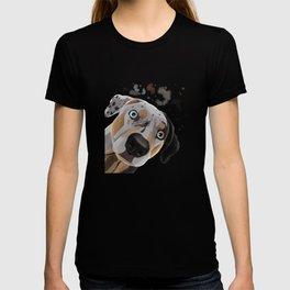 Curious Louisiana Catahoula Leopard Dog  T-shirt