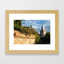 Castle Bad Fischau Brunn Framed Art Print