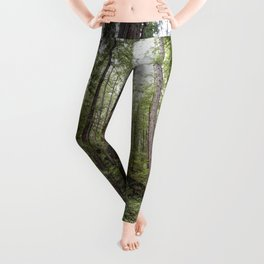 Fern Alley - Redwood Forest Nature Photography Leggings