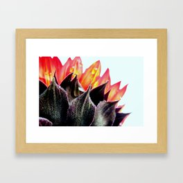 Beauty Framed Art Print