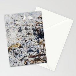San Shroud Stationery Cards
