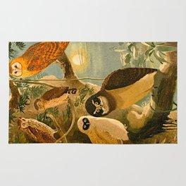 Album de aves amazonicas - Emil August Göldi - 1900 Amazon Animals Exotic Owls Rug