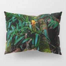 Kona Cloud Forest Sanctuary Pillow Sham